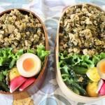 ひき肉と高菜の味噌炒め丼弁当と最近一番気に入っているコーデ。2015.10.29。