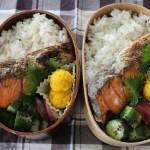 甘塩鮭弁当とブソルとキーンジャスパーで冷えとりコーデ。