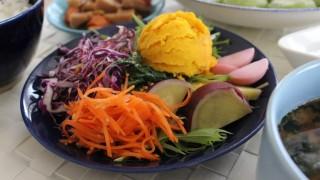 oisix冷凍食品 ほうれん草餃子昼食とドミンゴスカート冷えとりコーデ。