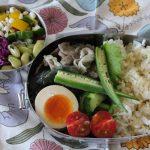 ナスの生姜煮弁当とアナトミカベスト冷えとりコーデ。