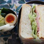 極太サンドイッチ弁当とインバーアラン冷えとりファッション。
