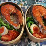 甘塩鮭弁当とロッキーマウンテンインナーベスト冷えとりファッション。
