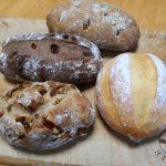 先週のパン教室の様子とANATOMICA白パン冷えとりファッション。